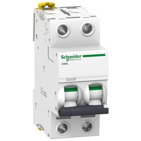 Leitungsschutzschalter iC60L-K20-2 C 20A 2- P+E