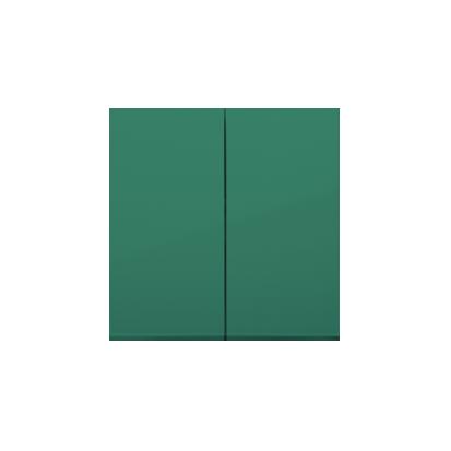 Wippe 2fach für Schalter/ Taster grün glänzend Simon 54 Premium Kontakt Simon  DKW5/33